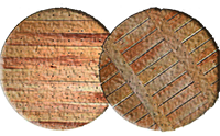 осиновый щит на дно колодца